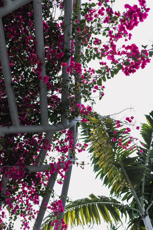 Miami02_3/16/19