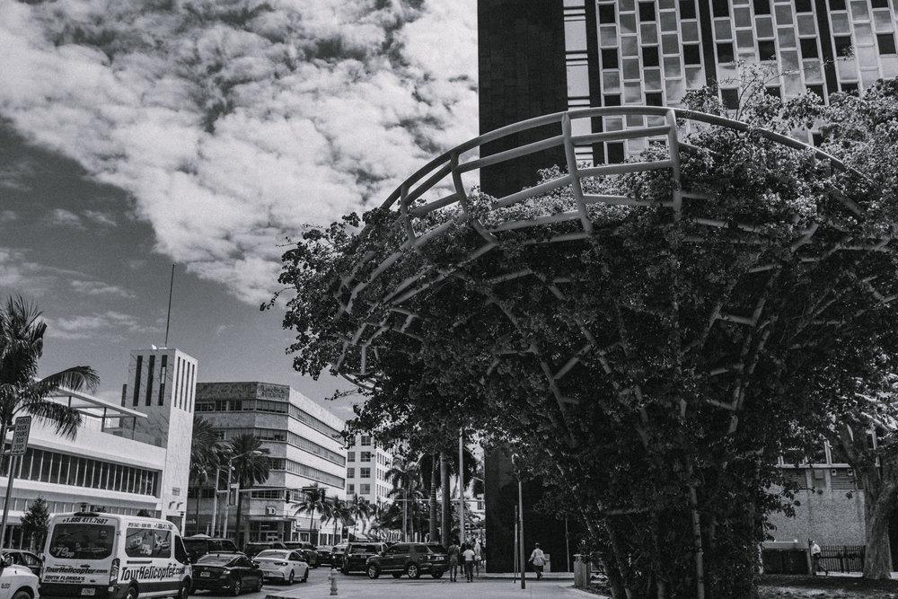 Miami04_3/16/19