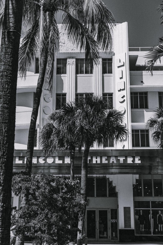 Miami06_3/16/19