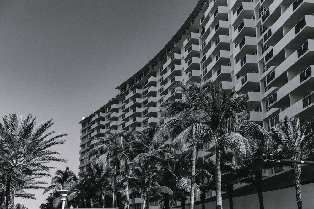 Miami11_3/16/19