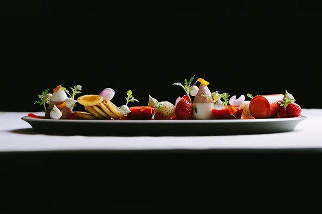 A Walk through the Garden | Yogurt Panna Cotta with Pancakes, Marigold Jelly and Whipped Strawberry Juice #elwynboyles #soigne