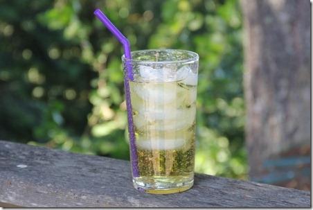 mint tea 10