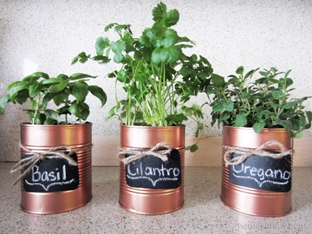 DIY Copper Tin Can Planters from Homey Oh My