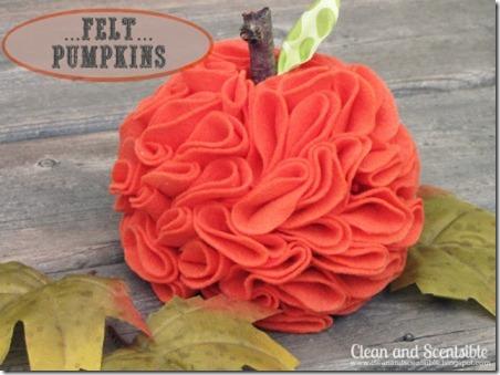 Felt Pumpkins 137 edit