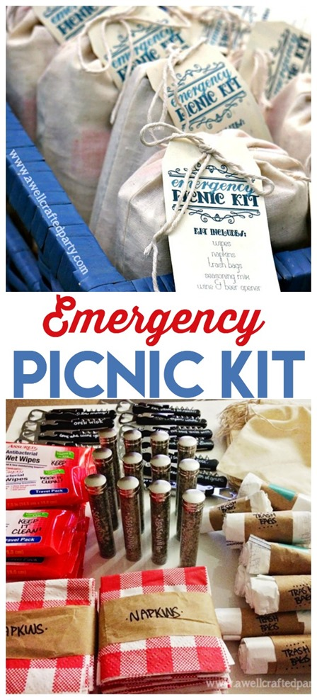 Emergency Picnic Kit from Todays Creative Life