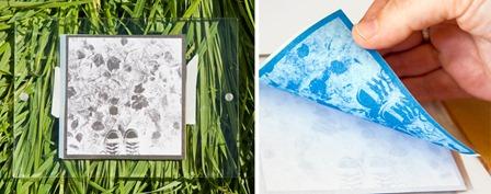 Turn Digital Photos into Sun Prints from Photojojo