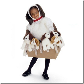 捡起垃圾万圣节服装的照片420-FF1003COSTA20