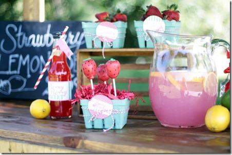 草莓柠檬水派对-Mimis娃娃屋