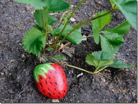 草莓保护贴-芝加哥创意