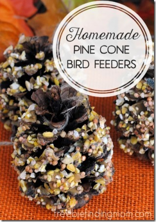 Homemade Pine Cone Bird Feeders from Freebie Finding Mom