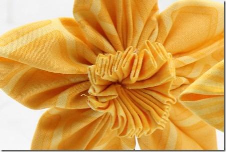 daffodil 016