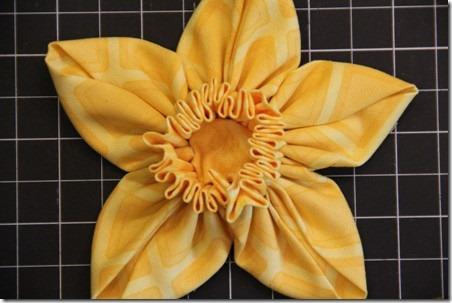daffodil 14