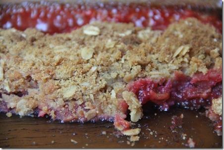 Gluten Free Rhubarb Crisp - Crafty Staci 2