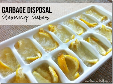 Garbage Disposal Cleaning Cubes from New Leaf Wellness