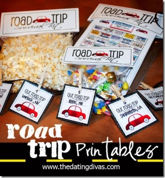 Tara-Road-Trip-Pinterest-Pic