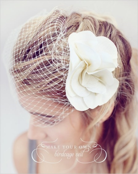 Birdcage Veil from Wedding Chicks