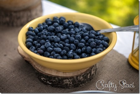 Blueberries for Wedding Drinks - Crafty Staci