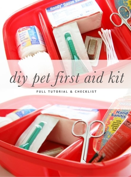 DIY Pet First Aid Kit from Pretty Fluffy