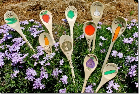 树枝和毒菌的木勺花园桩