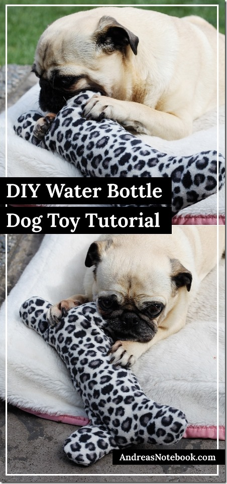 Water Bottle Dog Toy from Andrea's Notebook