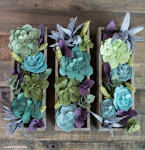 Felt Succulent Garden from Lia Griffith