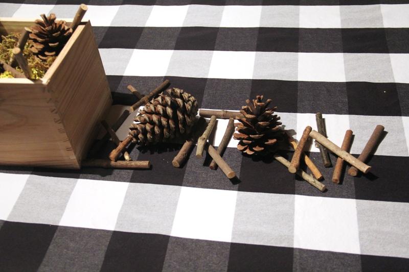 Pine cones and sticks next to box