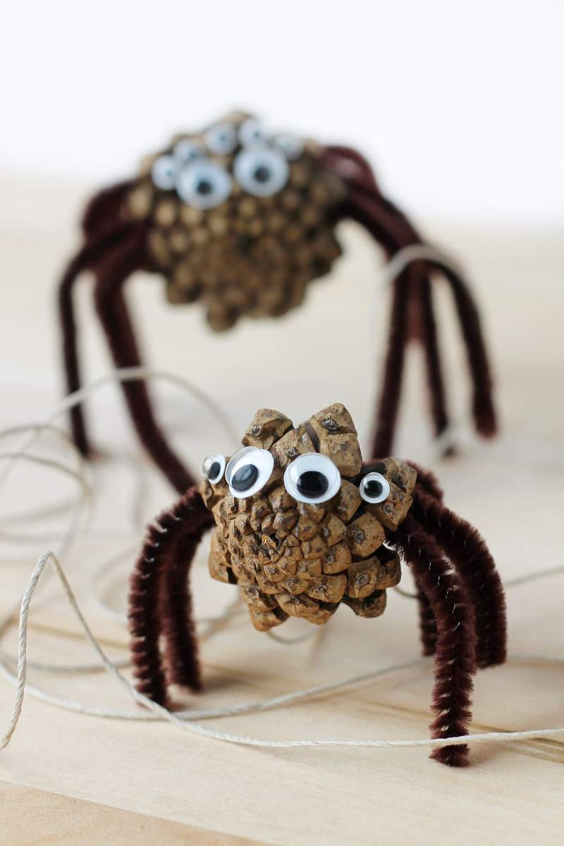 Pinecone Spiders from Fireflies and Mud Pies