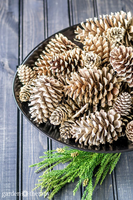 Bleached Pinecones from Garden Therapy