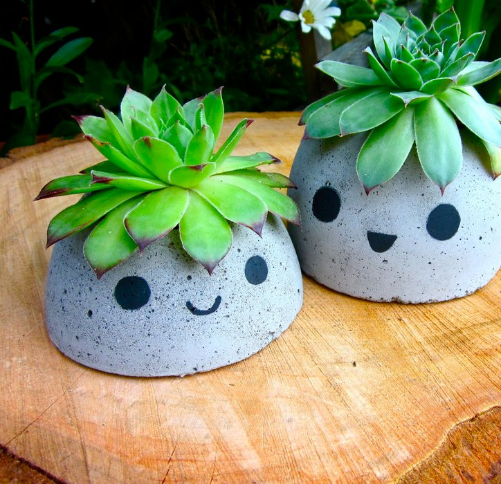 Concrete Planter from smori on Instructables