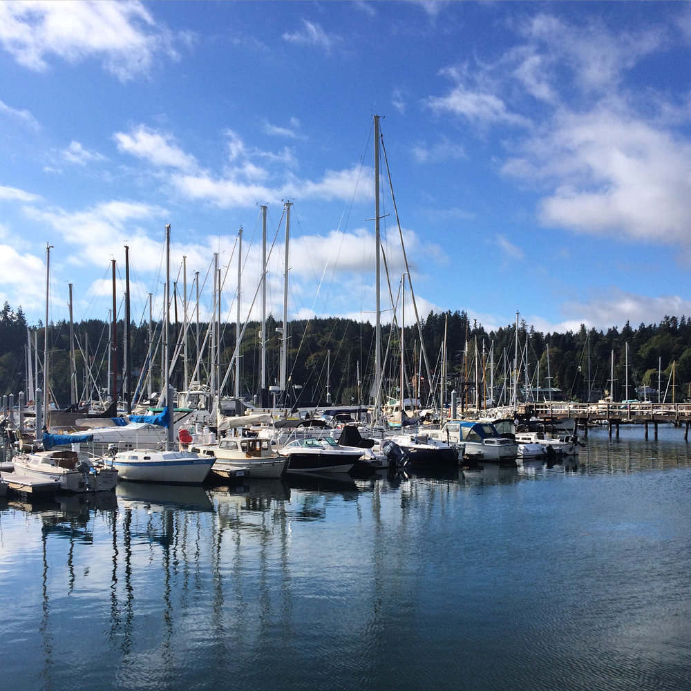 Eagle harbor Marina, bainbridge island, washington
