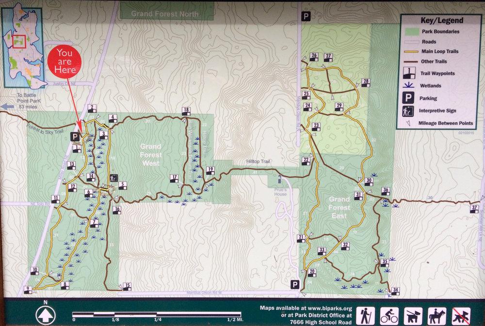 Map of The Grand Forest, Bainbridge Island