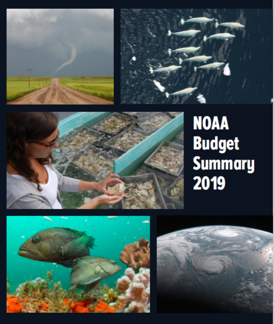 """The """"blue book"""" is illustrated with dozens of attractive, traditionall framed shots of extraordinary things.Don't mistake them for the stock photos that inflate corporate white papers. """"Many of the photos appearing in this publication were taken by NOAA employees, usually during the conduct of normal NOAA activities."""" Thank you, our public servants!"""