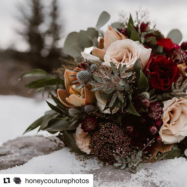 #Repost Lovely photo from @honeycouturephotos with ・・・ Florals really are my favourite thing.  My dream one day is to have a small space where I can create my own arrangements - for now however, I'll just continue to fall for every design I see!  Florals @fleurs.flowers . . . . #edmontonphotographer #vowrenwal #elopement #elopementphotographer #LLF #KLN  #edmontonweddingphotographer #yegweddings #yegwed #liveauthentic #livefolk #postivevibes #instagramyeg #yeg #yyc #yccweddingphotographer #yccweddings #lovestories #lovestory #cashinglight #oncewed #stylemepretty #wanderingphotographers #lookslikefilm #weshootjoy #explorecanada #totescanadian #explorebc