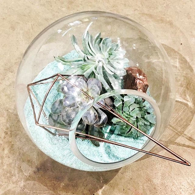 •Himelli Terrarium Workshop• *limited spaces left* . Sunday, Jan 22nd @ 1:30pm  Each participant will be given a Himelli supplied by @salvage  to use in their Terrarium . 110$  Includes Himelli, Terrarium, Succulents and all supplies.  Champagne and Snacks will be served as well. 🌸  Call 780-994-7673 or visit www.fleursflowers.ca to reserve your spot!