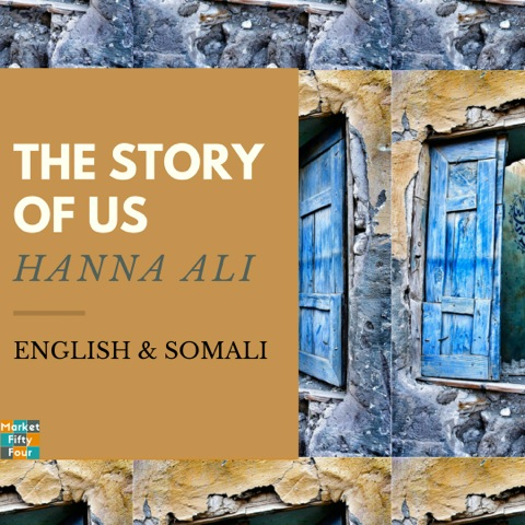 The Story of Us Cover by Hannah Ali