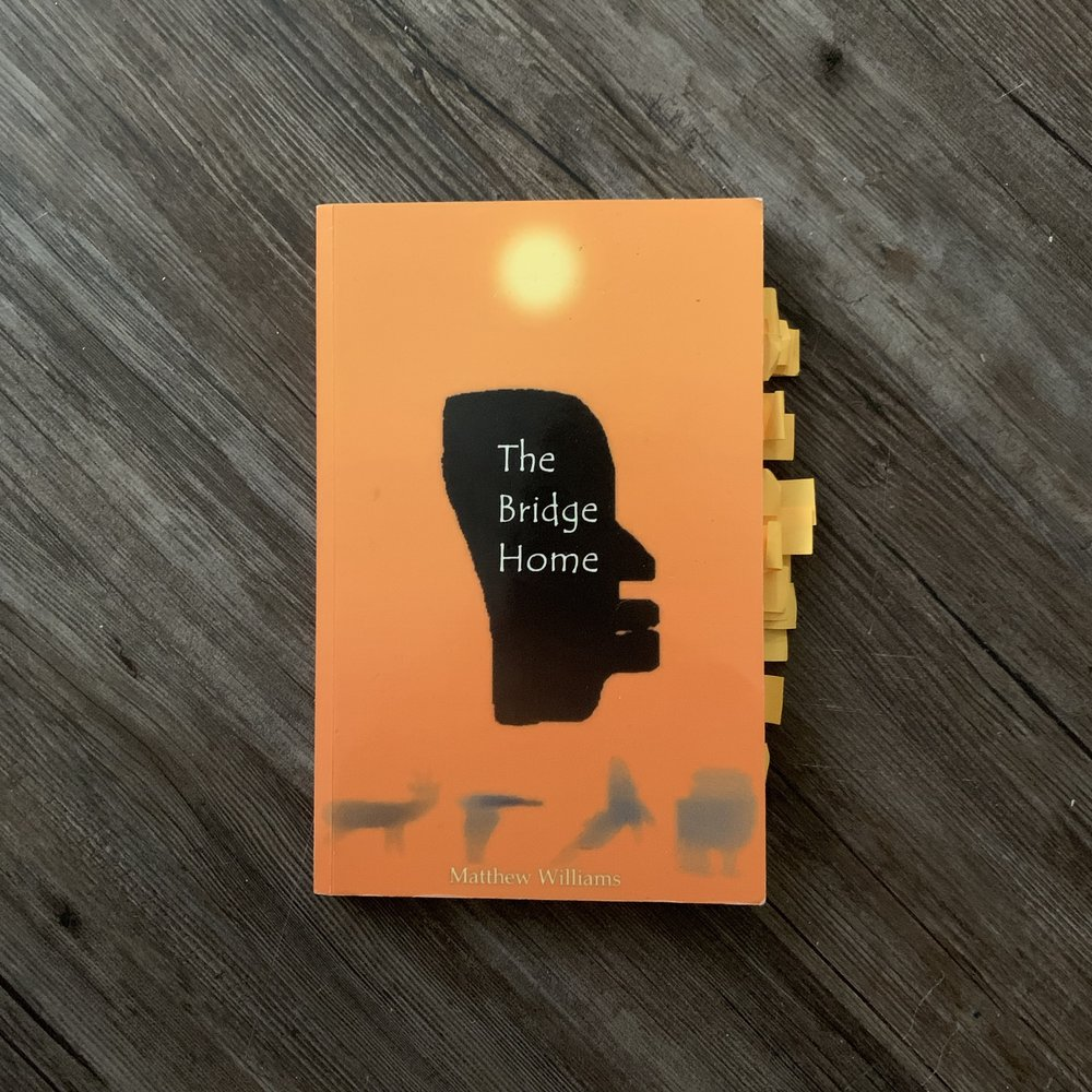 The Bridge Home Cover photo by Antoinette Scully