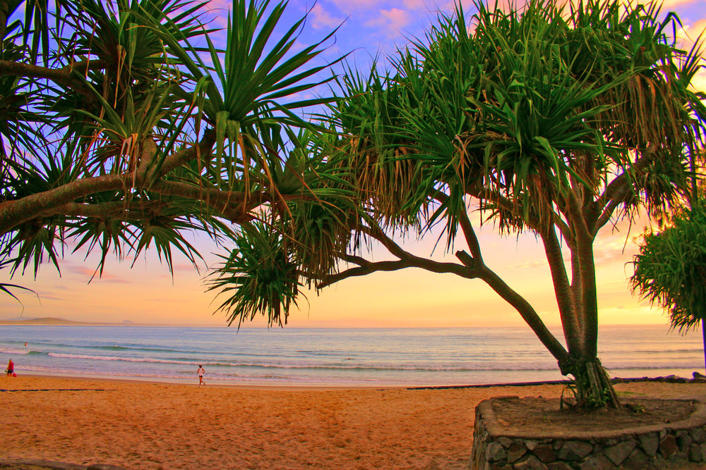 Make time to enjoy the beauty of the Sunshine Coast, whilst we take care of all your stress related IT issues