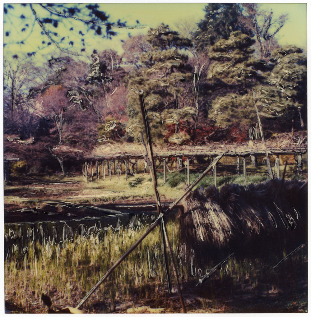 "Arthur Rosato ""Japan Field"""