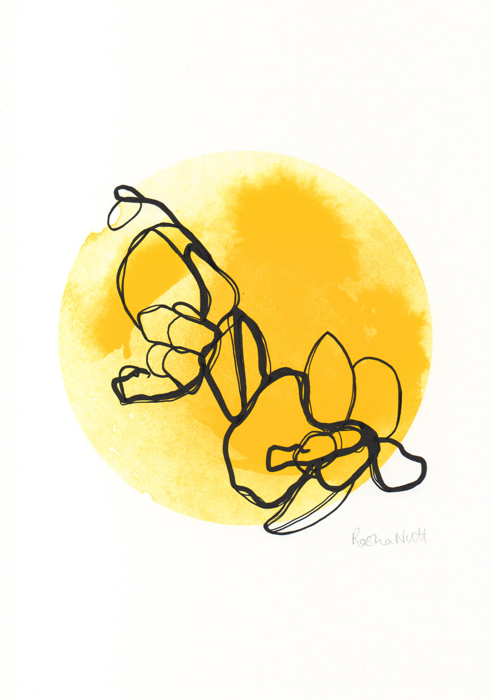 FlowersInTheSunIII.jpg