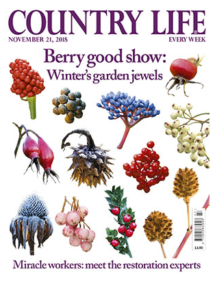 EDEN STAINED GLASS FEATURED IN COUNTRY LIFE! -