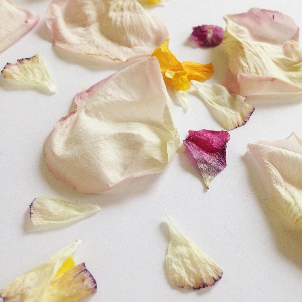 petal confetti diy step3