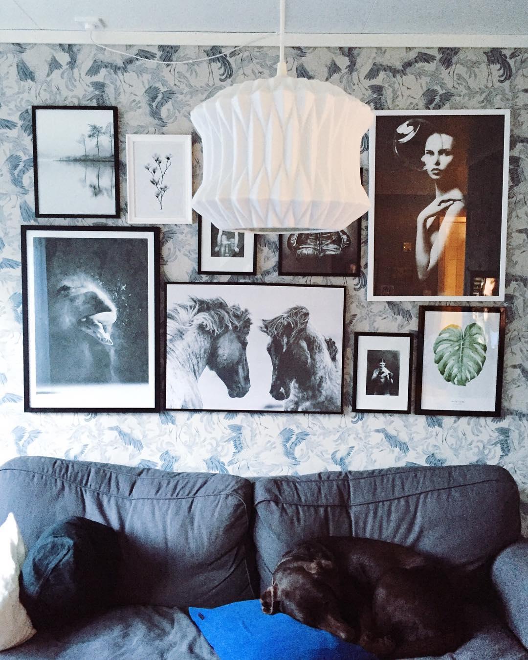 When my man is out drinking beer -- this is what I do: making collages. #desenio #sponset #tusenogenhatt #tusenogenhattcom #rom123 #boligliv #boligdrøm #boligpluss #interior4all #boligliv_dk #vakrehjemoginteriør #heminredning #kkliving #elledecoration #apartmenttherapy #boliginretning #boligliv #rumrum #livingroom #collage