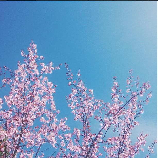 Skjermbilde 2015-04-27 kl. 13.25.24