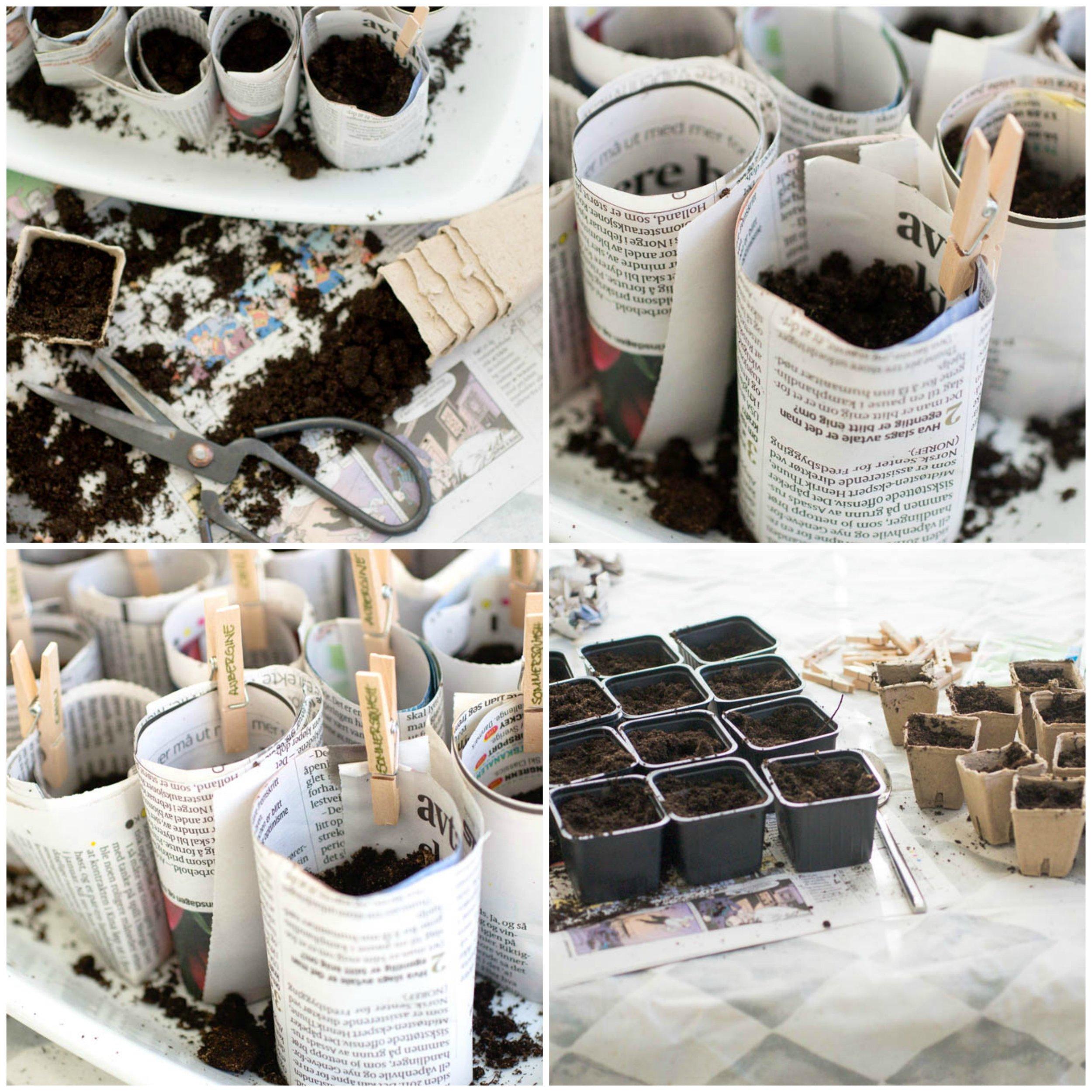 urteroggrønnsaksplanting