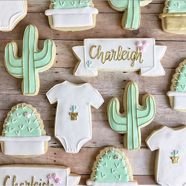 Cinco De Charleigh Celebration 👶 🌵 (6.18.18)
