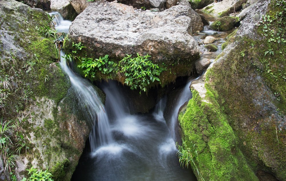 qingcheng-mountain-creek.jpg