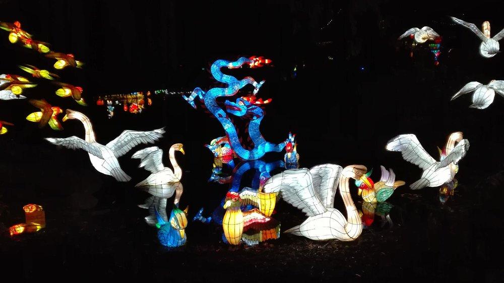 montreal-lantern.jpg