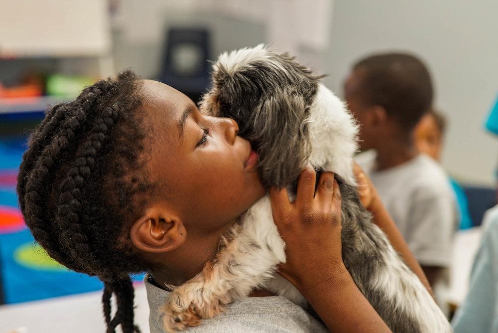 Pet Hospitals @ Delta Prep-10.jpg