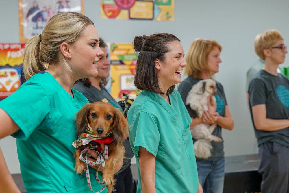 Pet Hospitals @ Delta Prep-6.jpg