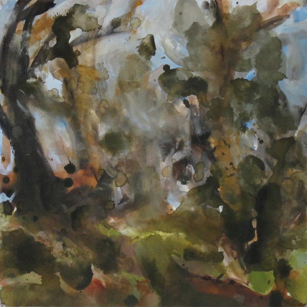 Dense Woods (2009)